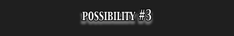 Possibility 3