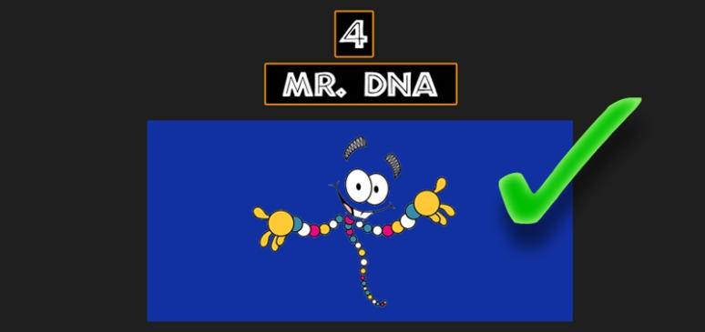 Mr_DNA