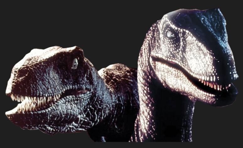 Raptor_Comparison